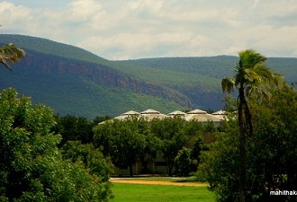 PIC OF THE WEEK: A View Of The Magical Tirupati Greens