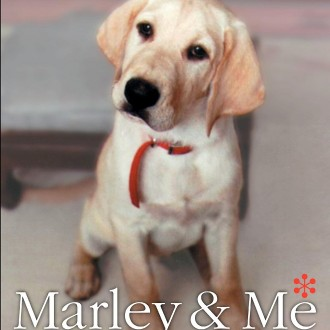 Marley & Me: The Many Forms Of Unconditional Love (A Memoir #Book Review)